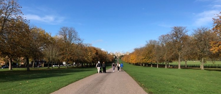 Windsor Walk